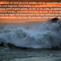 bevruchten_wind